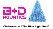 Christmas at Blue Light Pool