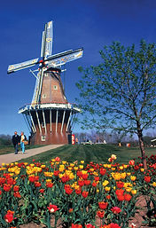 De-Zwaan-windmill-The-Netherlands-Mich-Holland.jpg