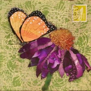 *SOLD* Butterfly on Purple Coneflower
