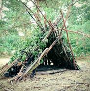 Log Cabin ?