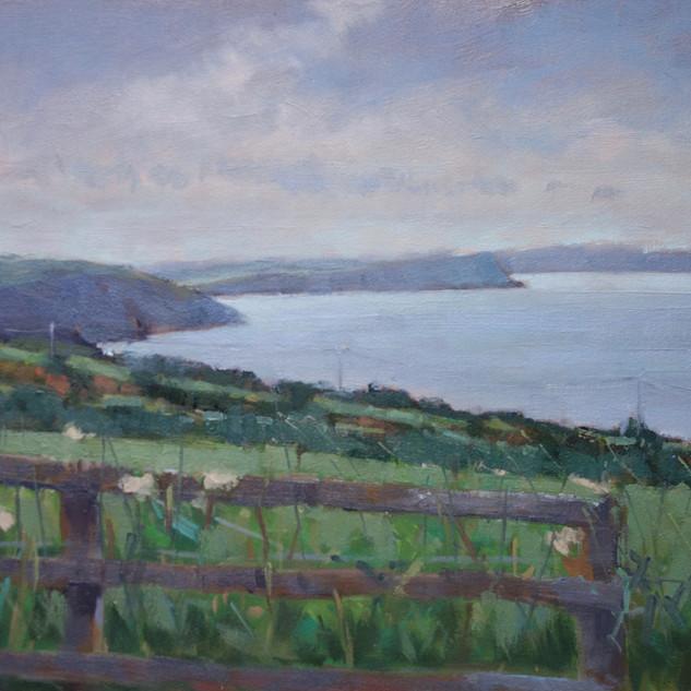 Towards Newport Bay