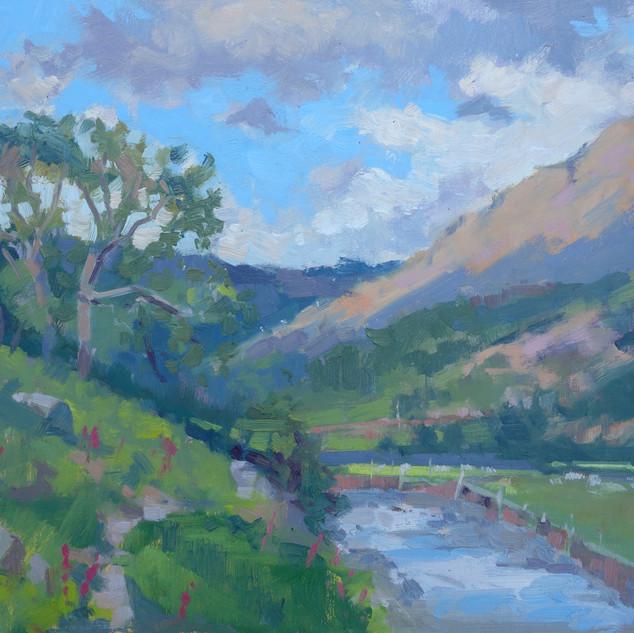 Seathwaite Valley, towards Bessy Boot