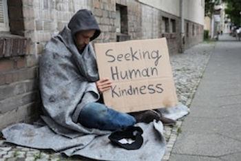 seeking kindness.jpg
