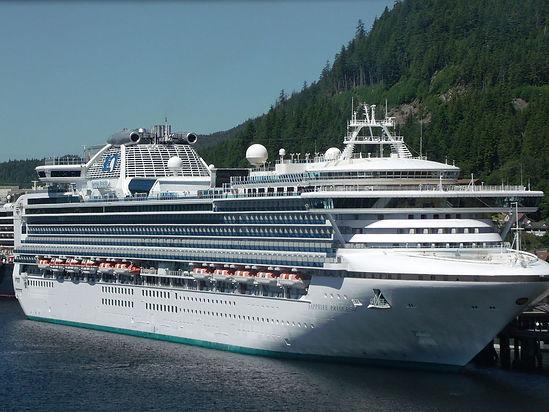 Princess Cruises Black Friday Sale
