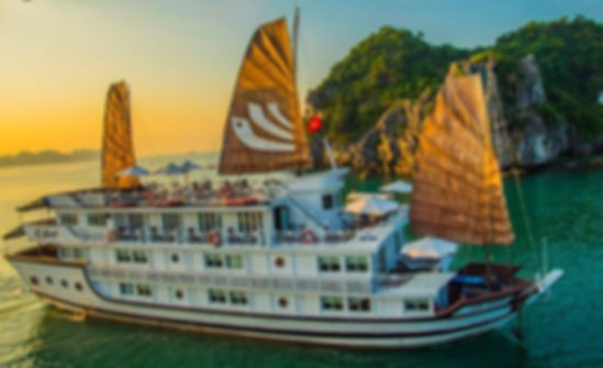 Bhaya Cruises & Viva Holidays Halong Bay Cruise