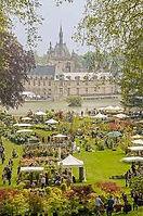 Chantilly.jpeg