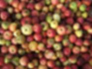 Pommes en vrac Marc Lateur.jpg