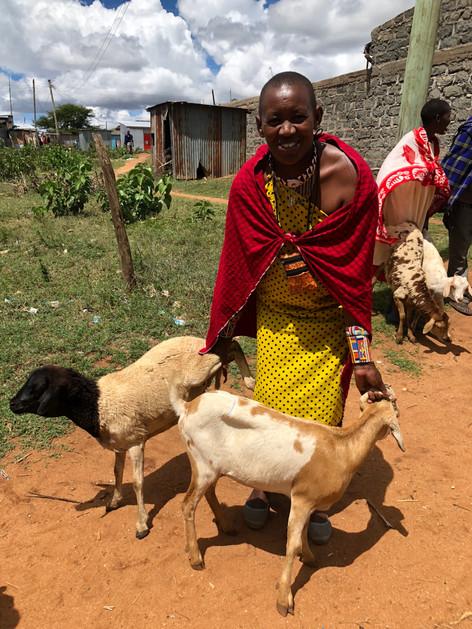 Livestock purchases