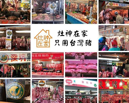 台灣豬.jpg