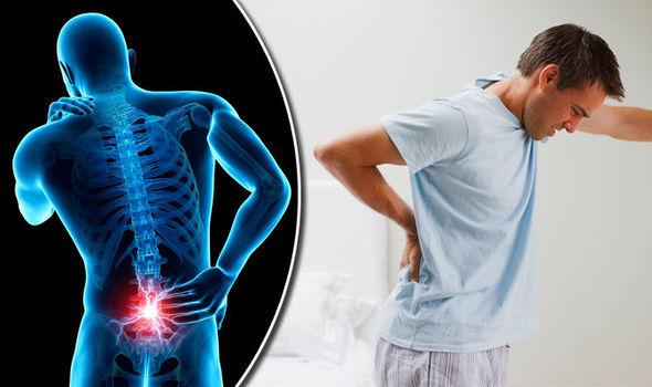 Back-pain-832555.jpg