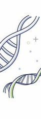 Re-Spark Mitochondria