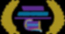 IDA-GENERIC-MERIT-300x159.png