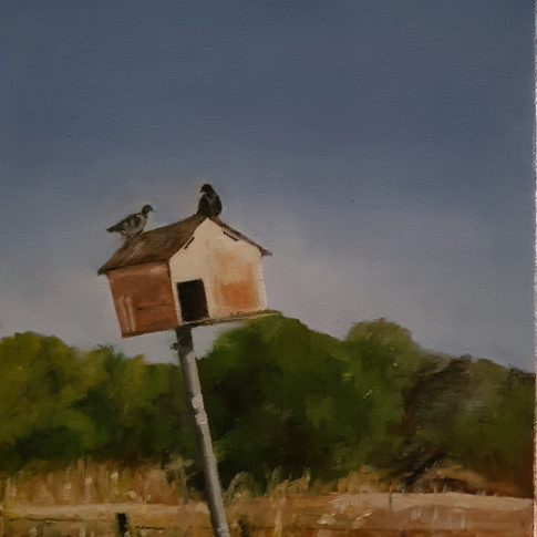 Dovecote with two pigeons