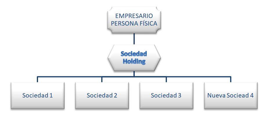 Estructura holding