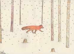 Fox010