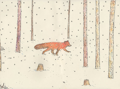The Fox_ Signed Print - Ltd Edition
