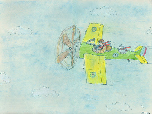 The Airplane Ride_ Signed Print - Ltd Edition