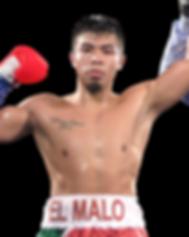 Boxer Jose Ibarra