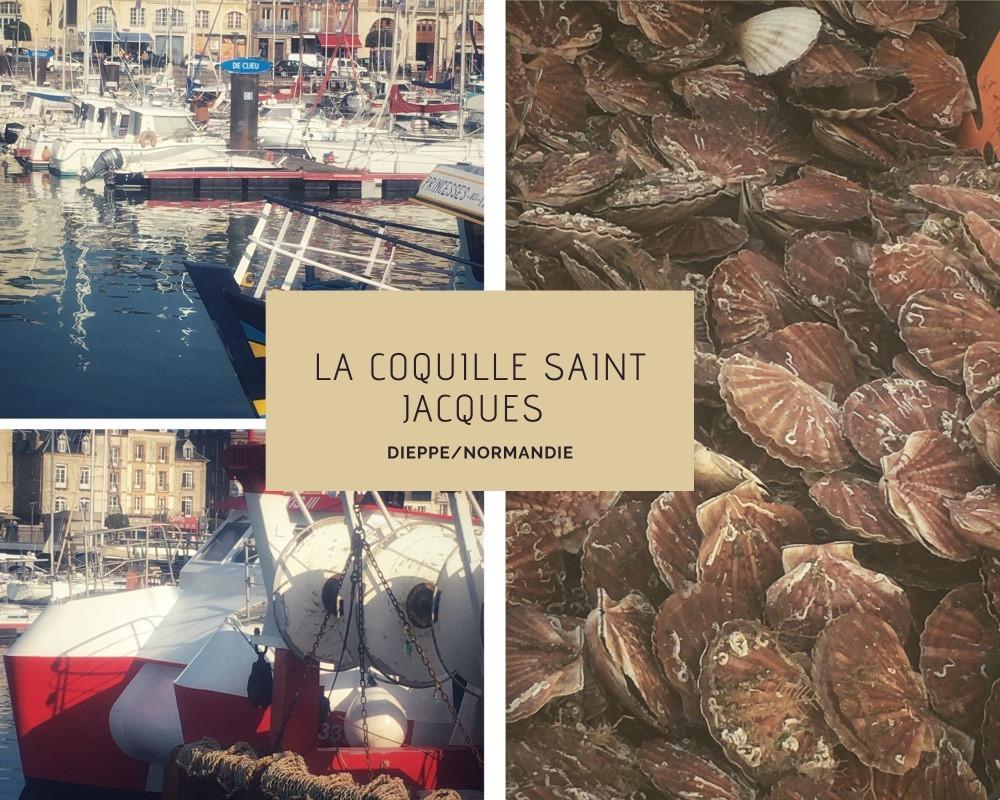 images du port de dieppe, de la coquille Saint Jacques, des coquillarts