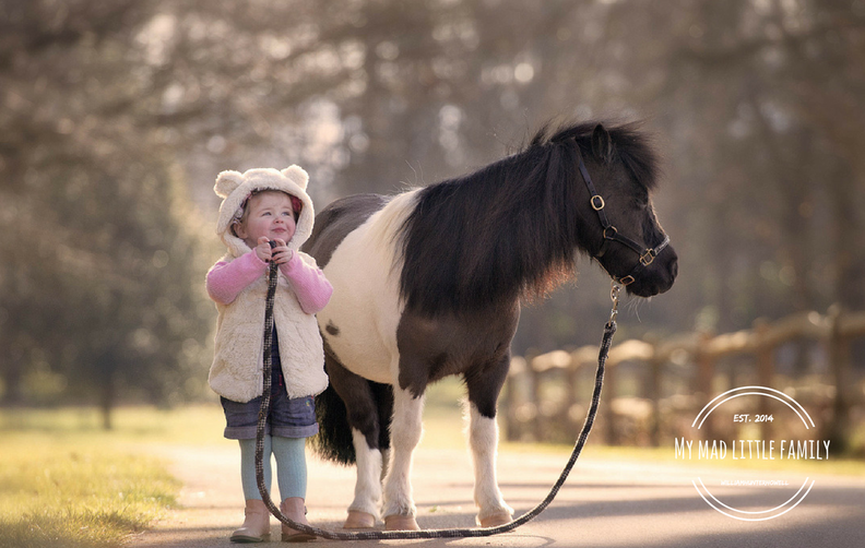 "The Dreaded, ""Daddy Can I Have a Pony?"""