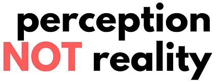 #PerceptionNotReality, Perception Not Reality logo