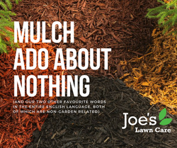 Mulch Ado About Nothing