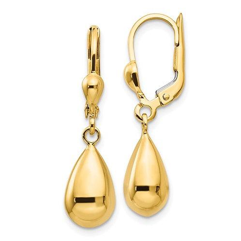 14k Polished Fancy Dangle Leverback Earrings