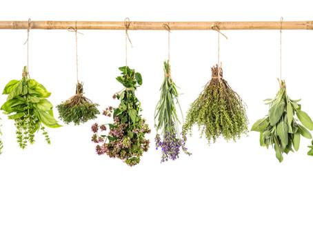 Ratafia | Recepte i les seves plantes aromàtiques i medicinals