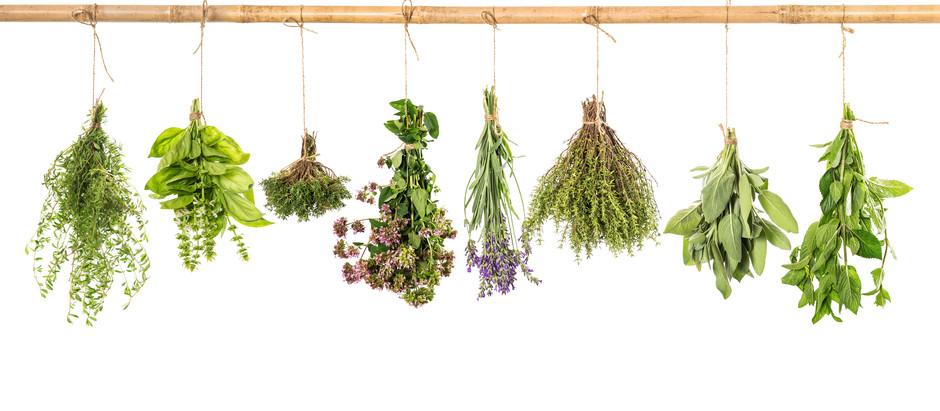 Ratafia   Recepte i les seves plantes aromàtiques i medicinals