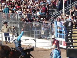 La Fiesta de los Vaqueros - Tucson