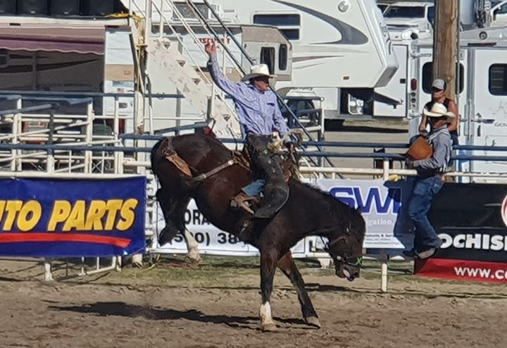Benson Butterfield Rodeo