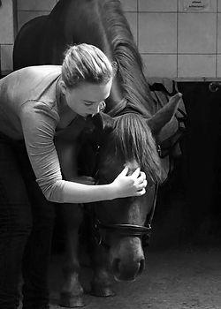 Hippodream Balance, Julia Groenhart aan het behandelen met Cranio-Sacraal Therapie bij paarden.