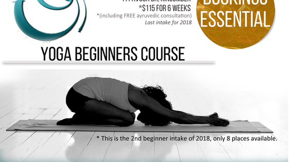 New Beginner Course Available
