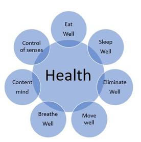 New Wellness Class