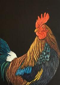Top Cock.jpg