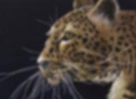 Jennys Leopard .jpg
