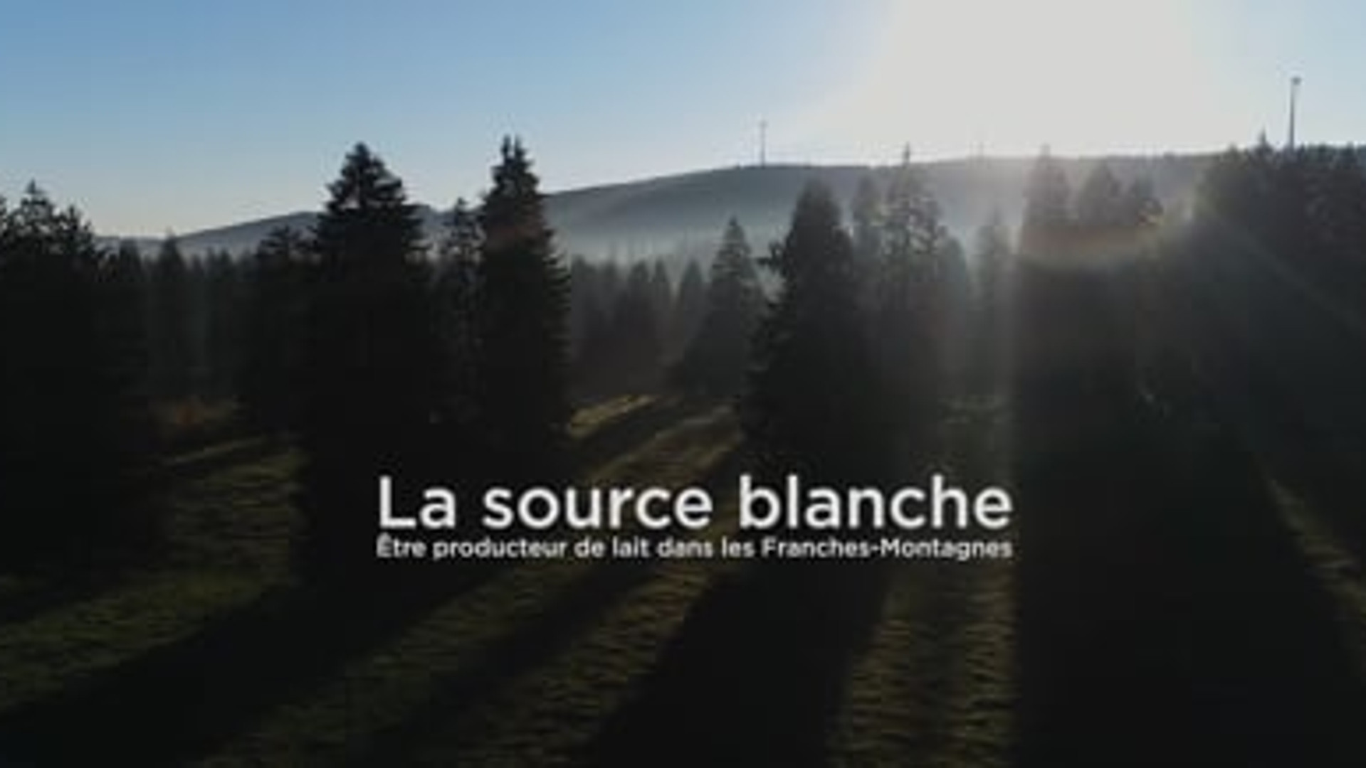 Fromagerie des Franches-Montagnes - Documentary
