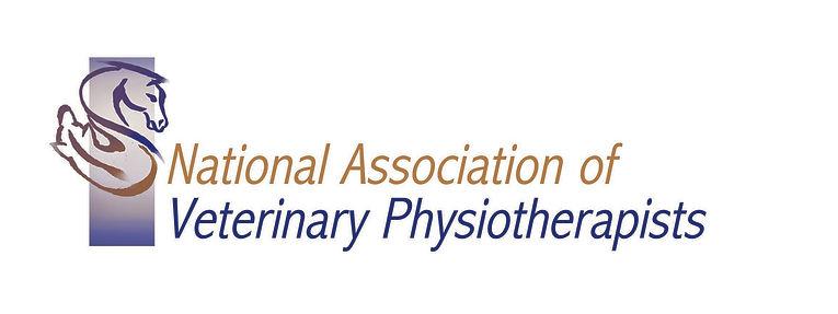 NAVP Logo .jpg