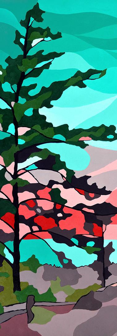 Lake Huron Beach Pine