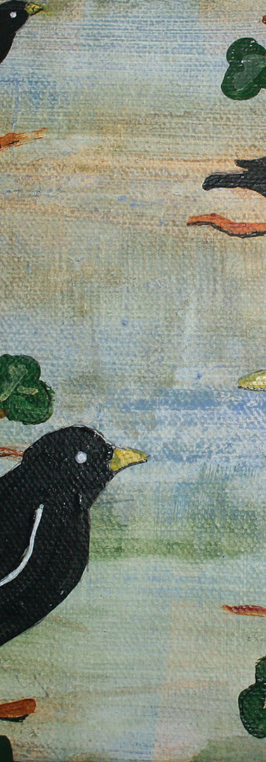 Black Birds Branch