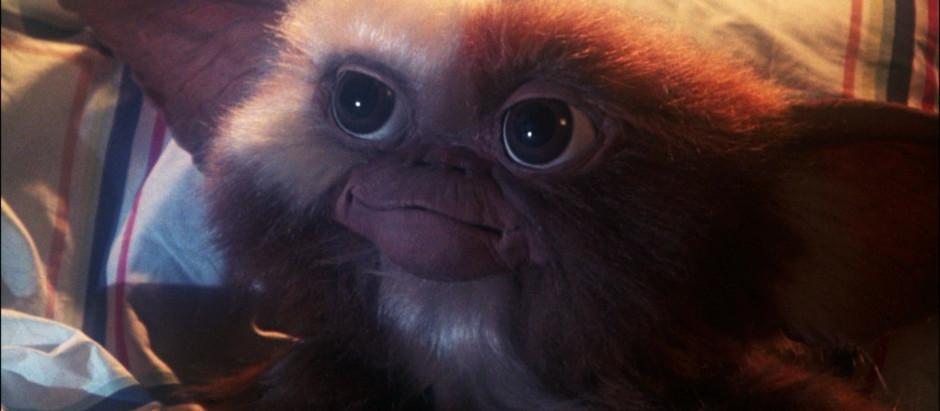 Chris Columbus Provides Update on 'Gremlins 3'