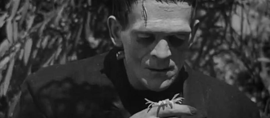 Ceris' 31 Days of Horror Challenge: Day 3 - Frankenstein