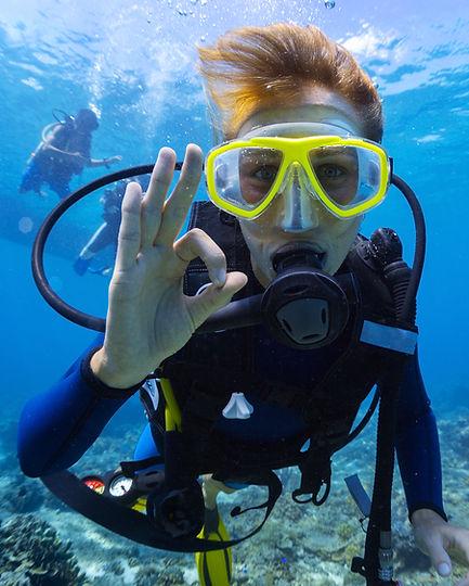 Plongeur