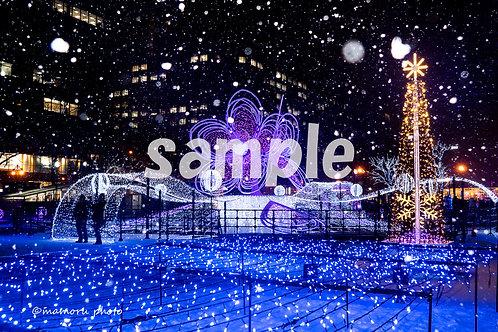 Postcard 2019 Winter D