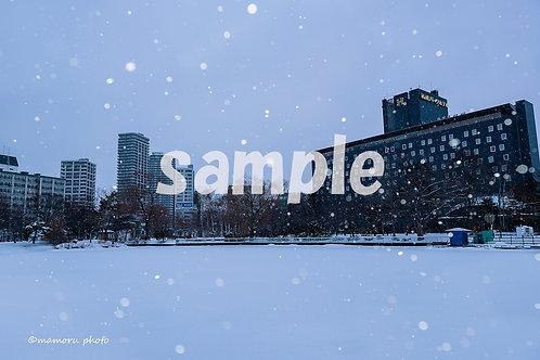 ポストカード 2019 冬4枚セット