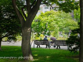 初夏の札幌 Sapporo in early summer.