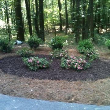 Garden Services 14