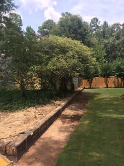 Lawns 6