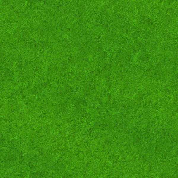 Lawns 1