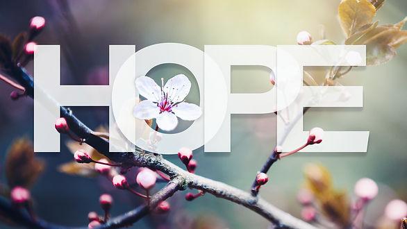 PlaceholderTitle_Hope_1920x1080.jpg